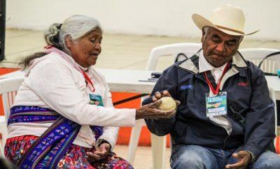 autoridades indigenas