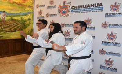 karatecas-chihuahua