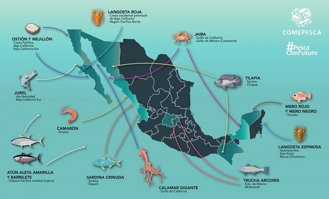 El país tiene tiene zonas costeras que totalizan más de 10 mil kilómetros