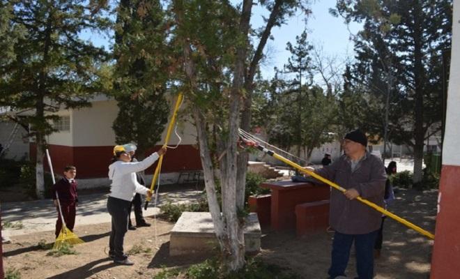 reforestando-escuelas